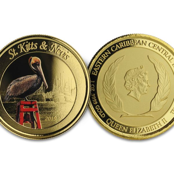 1 oz Pièce Or Pur St-Kitts & Nevis Brown Pelican Fine Gold Coin Proof .9999 2019